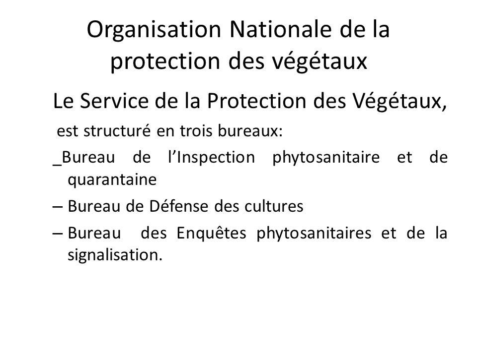Organisation Nationale de la protection des végétaux