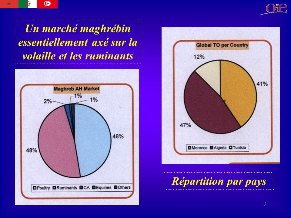 Un marché maghrébin essentiellement axé sur la volaille et les ruminants