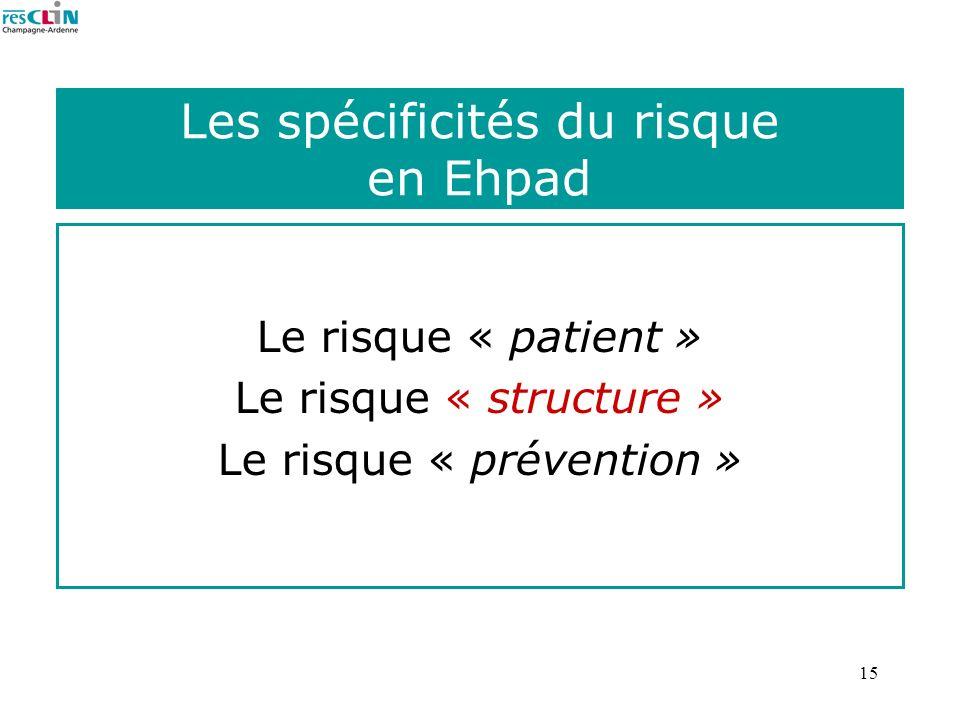 Les spécificités du risque en Ehpad