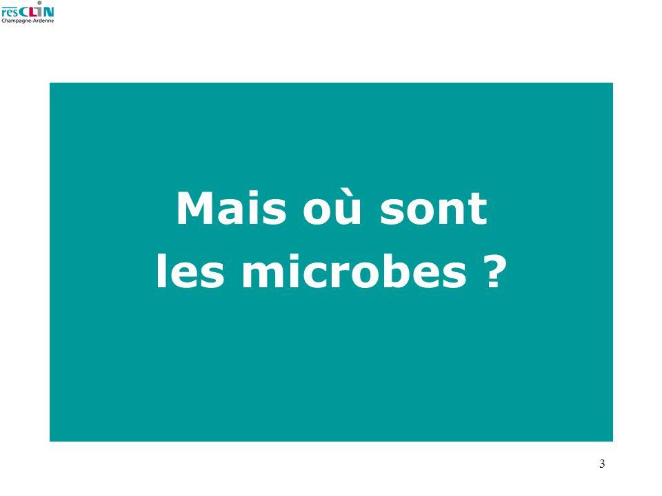 Mais où sont les microbes