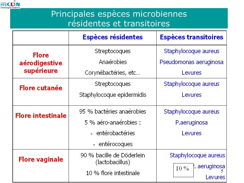 Principales espèces microbiennes résidentes et transitoires