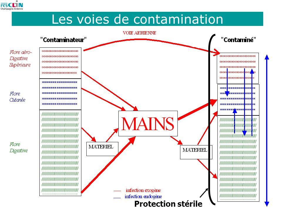 Les voies de contamination
