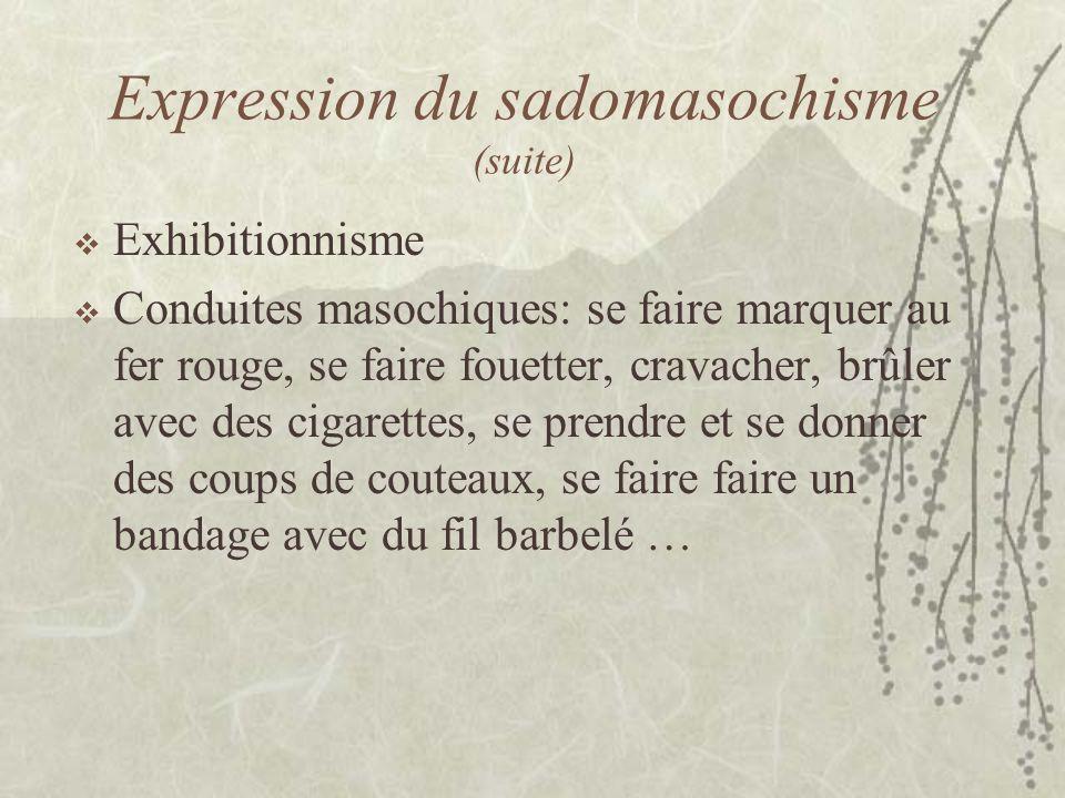 Expression du sadomasochisme (suite)