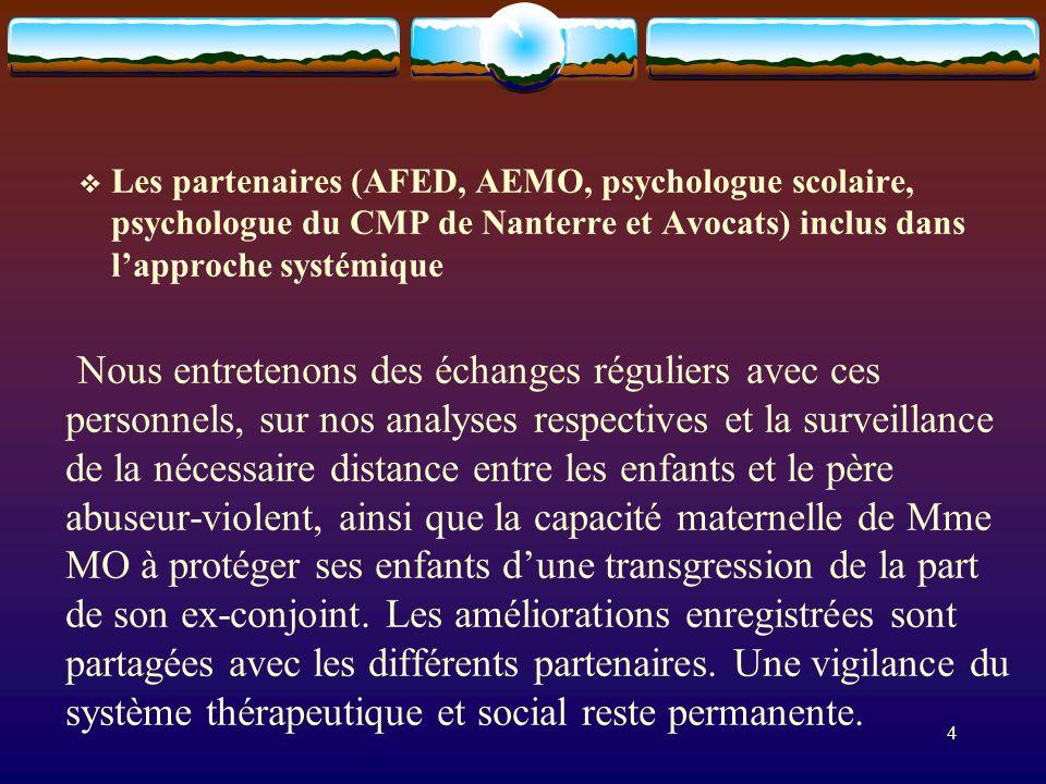 Les partenaires (AFED, AEMO, psychologue scolaire, psychologue du CMP de Nanterre et Avocats) inclus dans l'approche systémique