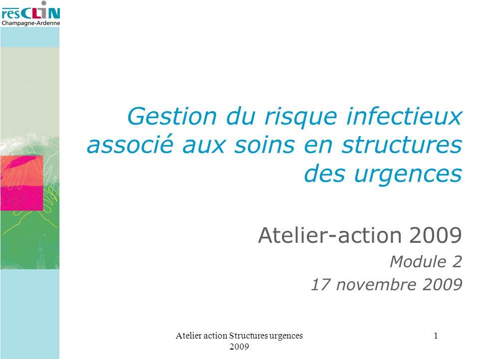 Atelier-action 2009 Module 2 17 novembre 2009