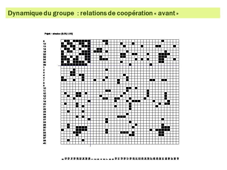 Dynamique du groupe : relations de coopération « avant »