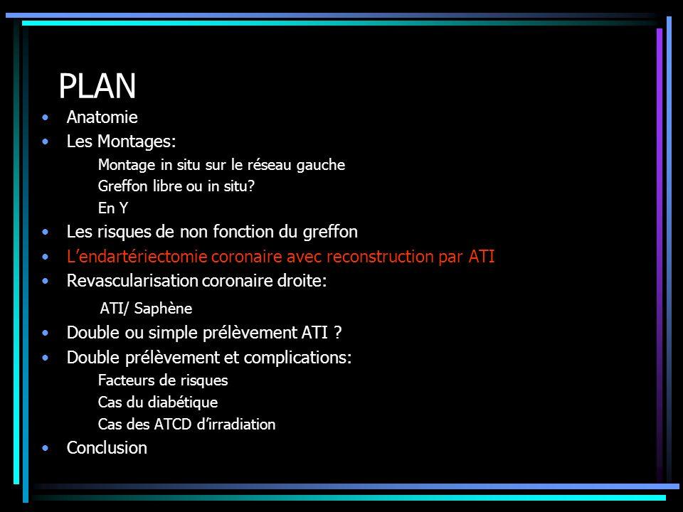 PLAN ATI/ Saphène Anatomie Les Montages: