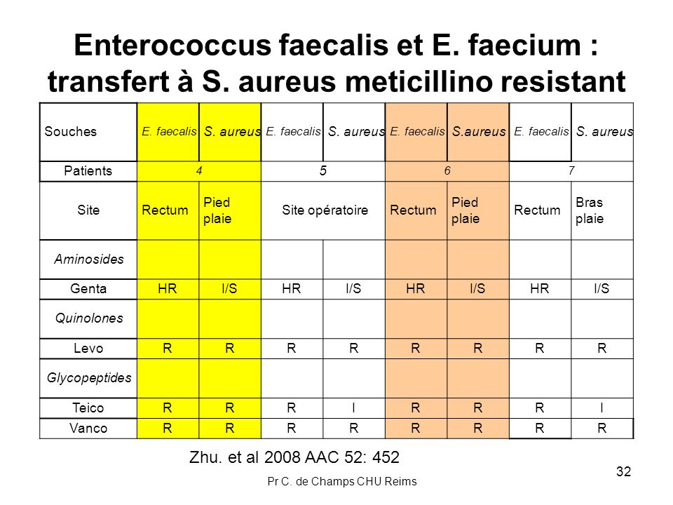 Enterococcus faecalis et E. faecium : transfert à S