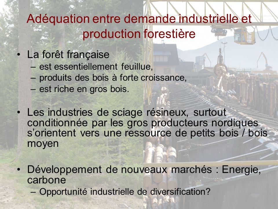 Adéquation entre demande industrielle et production forestière