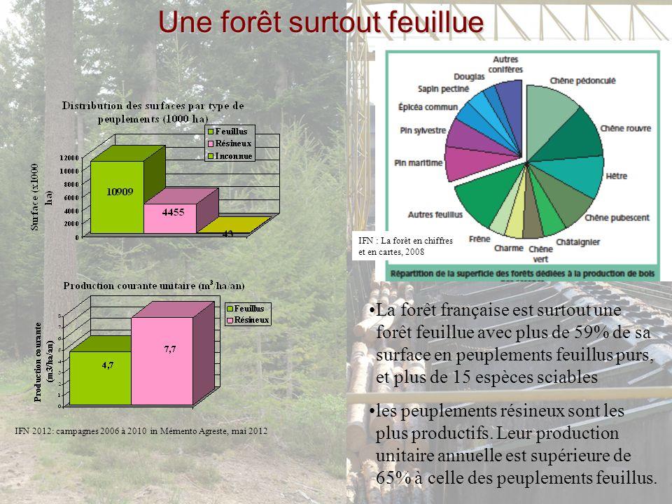 Une forêt surtout feuillue