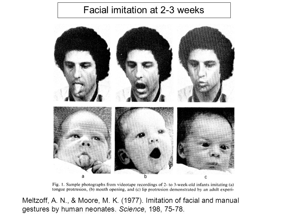 Facial imitation at 2-3 weeks