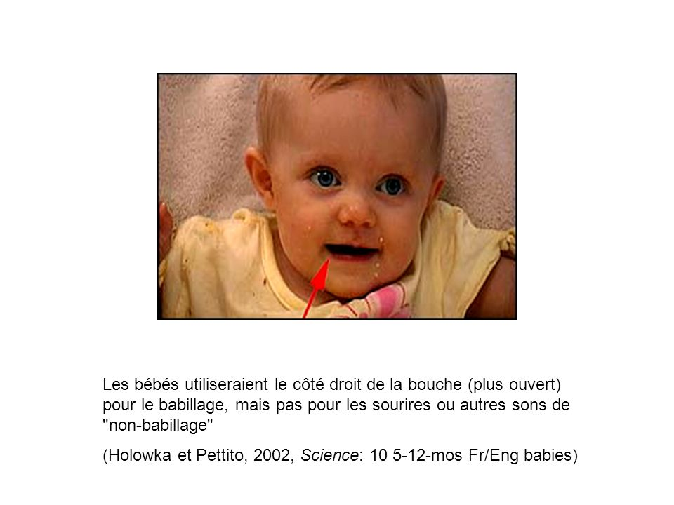(Holowka et Pettito, 2002, Science: 10 5-12-mos Fr/Eng babies)