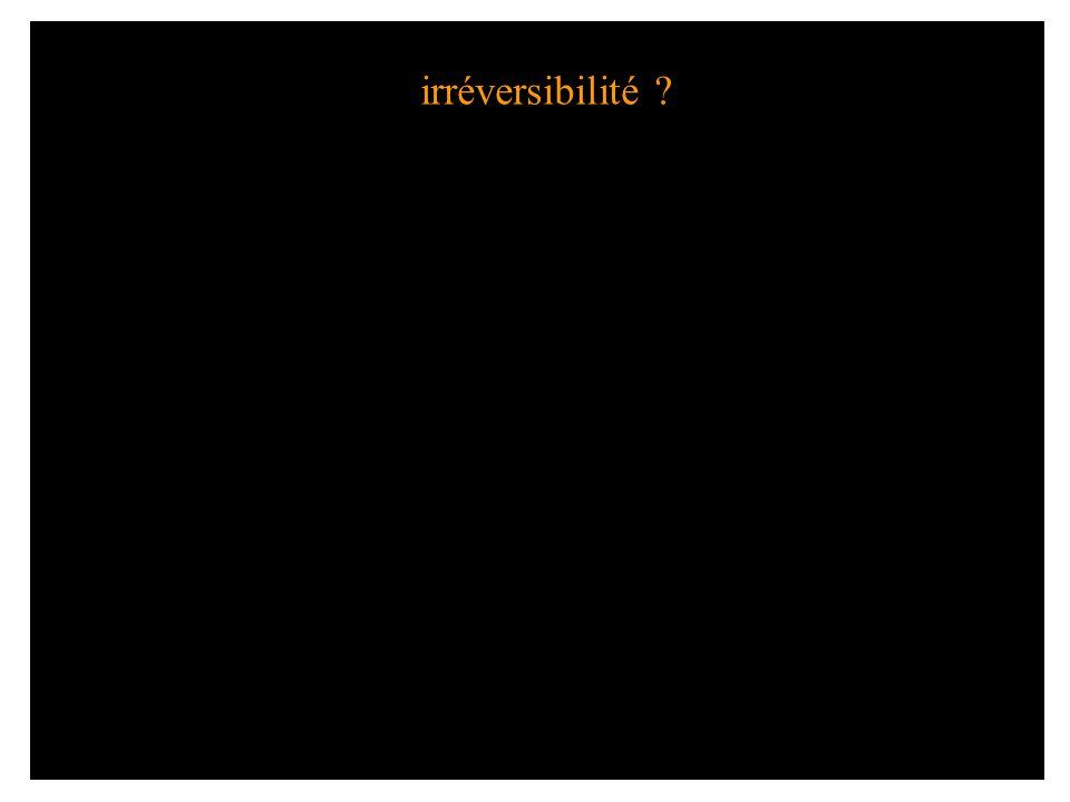 irréversibilité