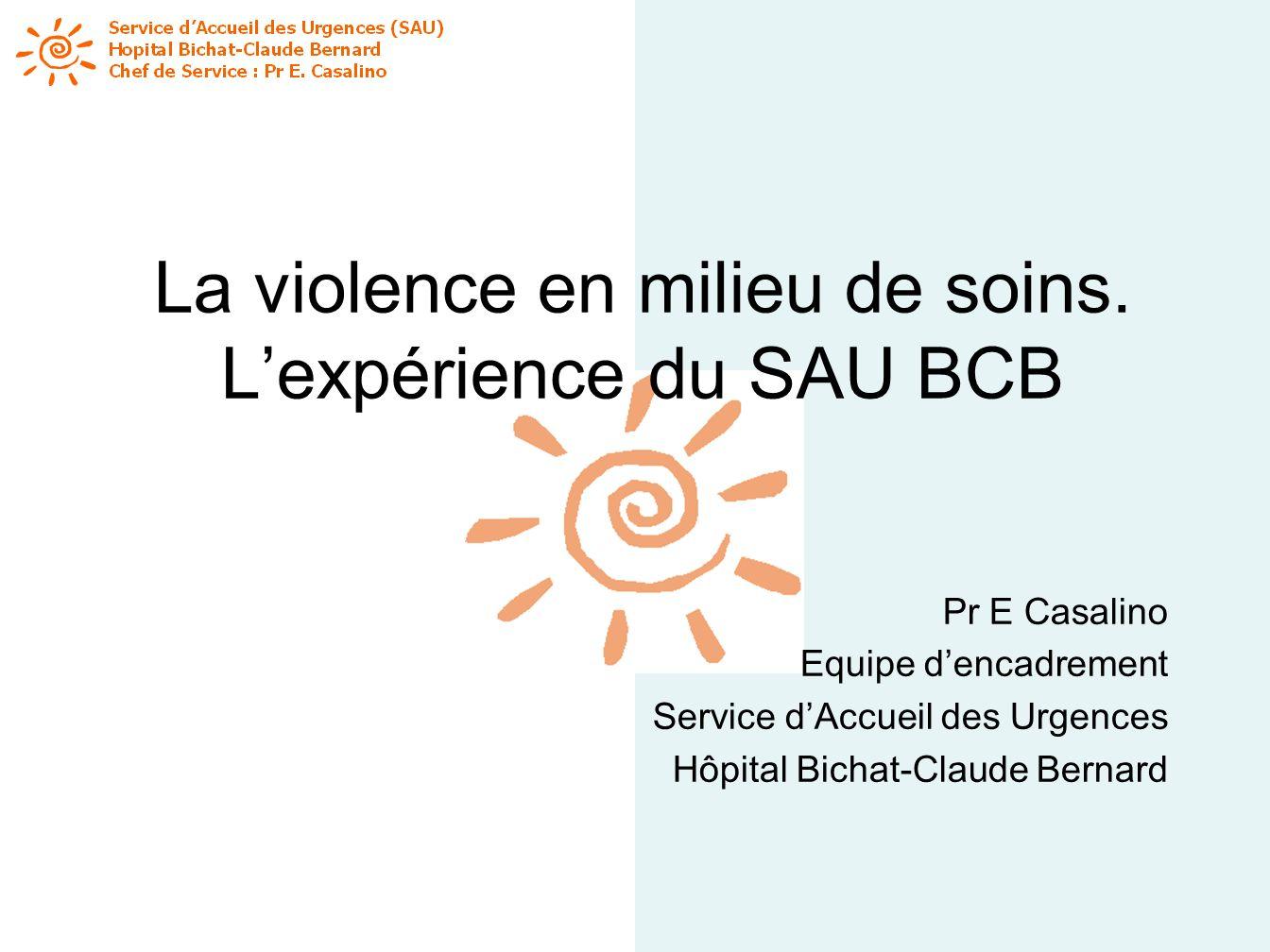 La violence en milieu de soins. L'expérience du SAU BCB