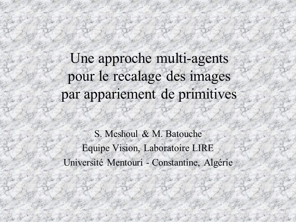 Une approche multi-agents pour le recalage des images par appariement de primitives
