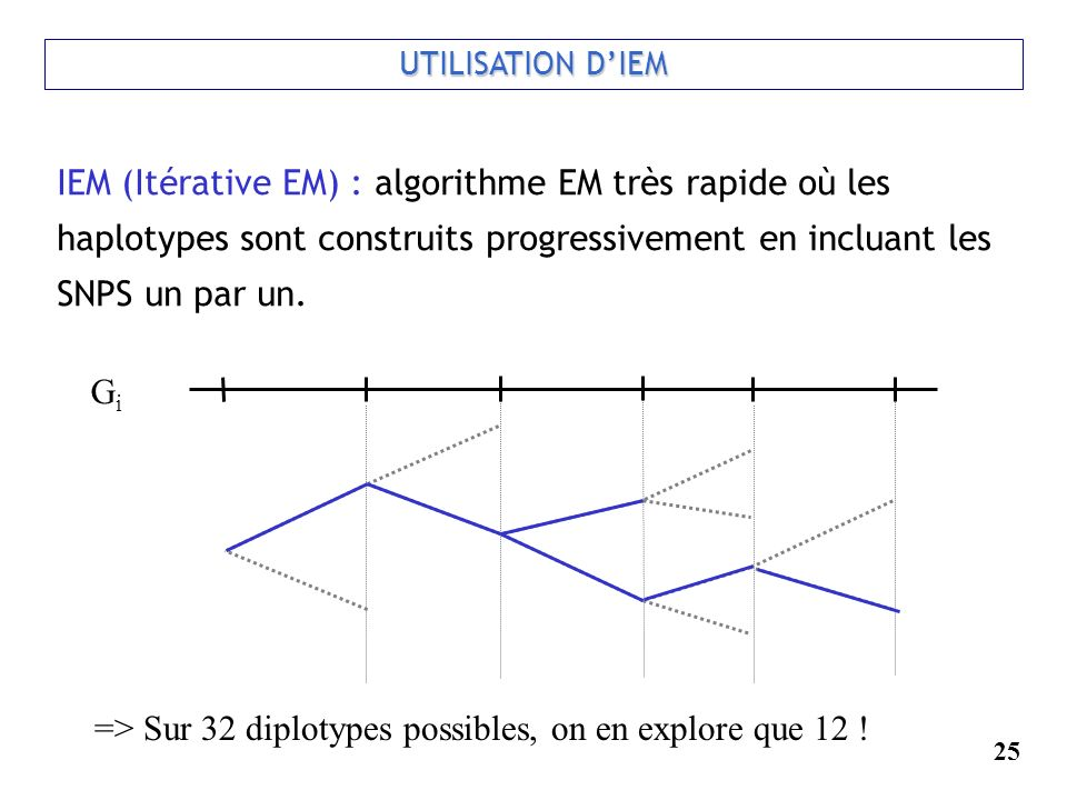 => Sur 32 diplotypes possibles, on en explore que 12 !