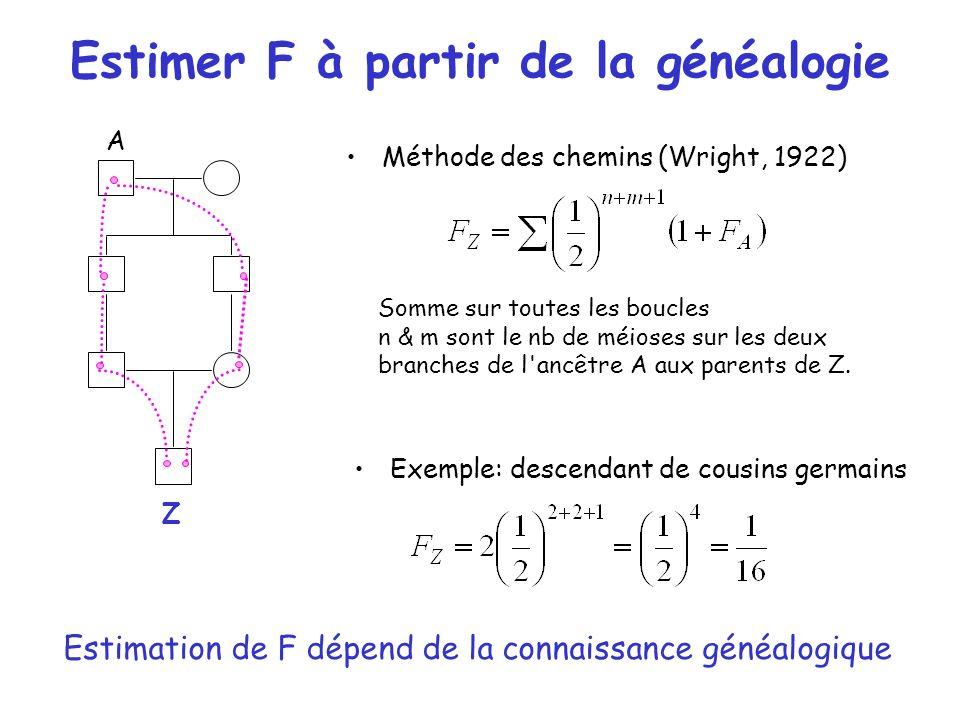 Estimer F à partir de la généalogie