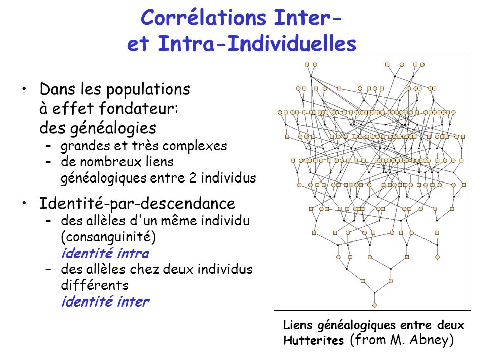 Corrélations Inter- et Intra-Individuelles
