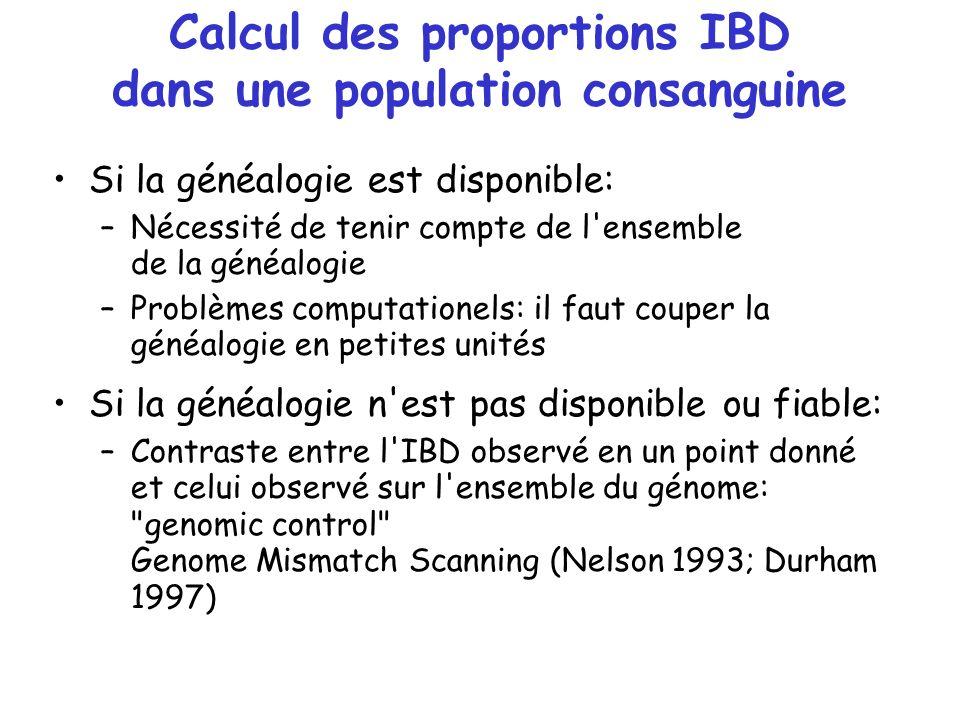 Calcul des proportions IBD dans une population consanguine