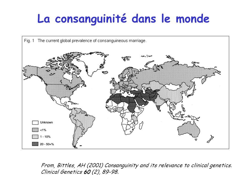 La consanguinité dans le monde
