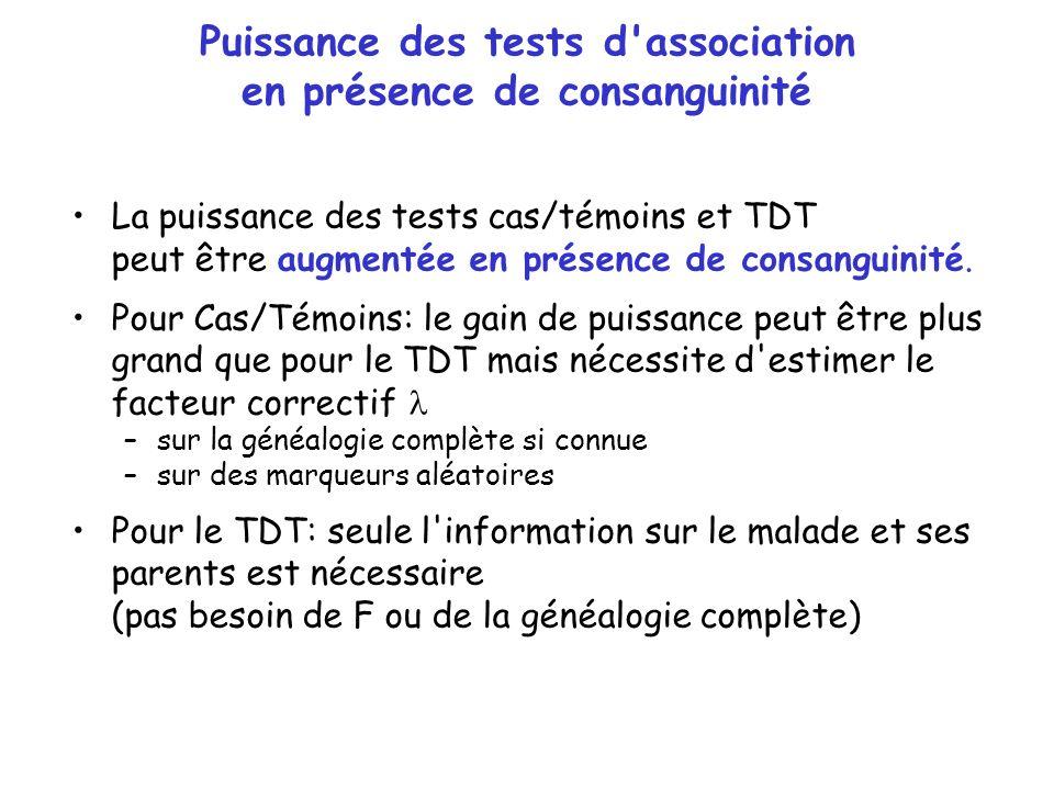 Puissance des tests d association en présence de consanguinité
