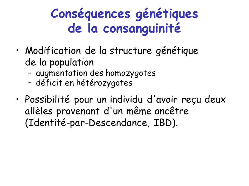 Conséquences génétiques de la consanguinité