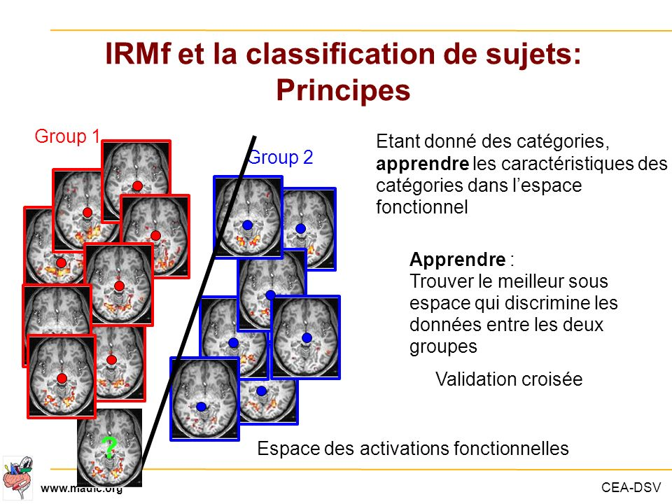 IRMf et la classification de sujets: Principes