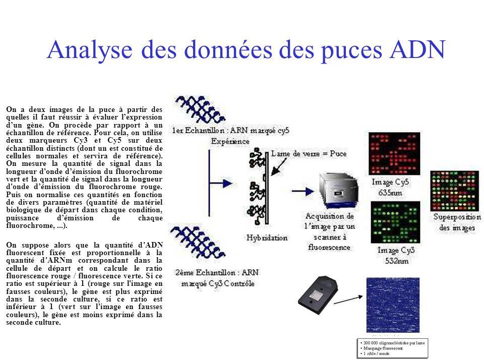Analyse des données des puces ADN