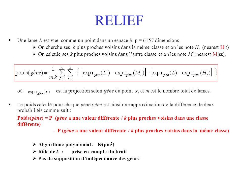 RELIEF Une lame L est vue comme un point dans un espace à p = 6157 dimensions.