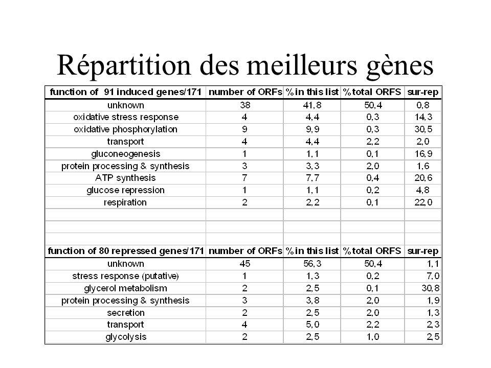 Répartition des meilleurs gènes