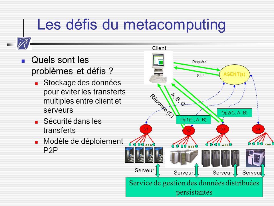 Les défis du metacomputing
