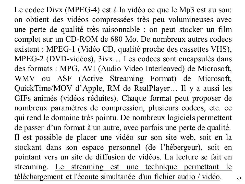 Le codec Divx (MPEG-4) est à la vidéo ce que le Mp3 est au son: on obtient des vidéos compressées très peu volumineuses avec une perte de qualité très raisonnable : on peut stocker un film complet sur un CD-ROM de 680 Mo. De nombreux autres codecs existent : MPEG-1 (Vidéo CD, qualité proche des cassettes VHS), MPEG-2 (DVD-vidéos), 3ivx… Les codecs sont encapsulés dans des formats : MPG, AVI (Audio Video Interleaved) de Microsoft, WMV ou ASF (Active Streaming Format) de Microsoft, QuickTime/MOV d'Apple, RM de RealPlayer… Il y a aussi les GIFs animés (vidéos réduites). Chaque format peut proposer de nombreux paramètres de compression, plusieurs codecs, etc. ce qui rend le domaine très pointu. De nombreux logiciels permettent de passer d'un format à un autre, avec parfois une perte de qualité.