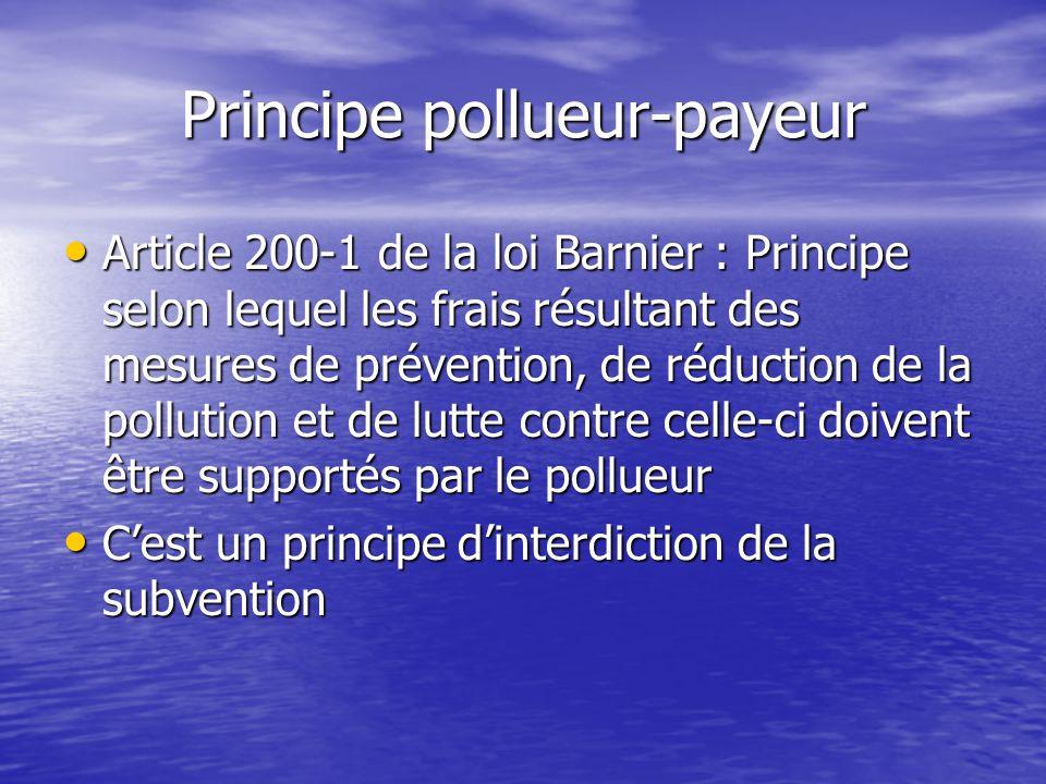 Principe pollueur-payeur