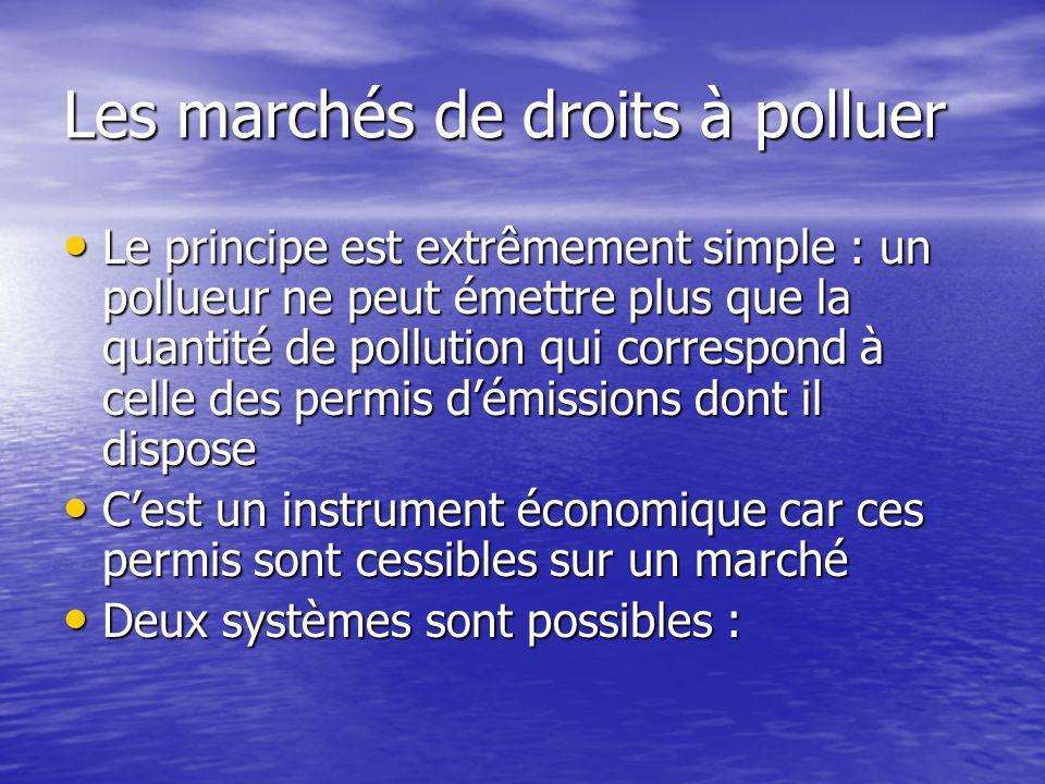 Les marchés de droits à polluer