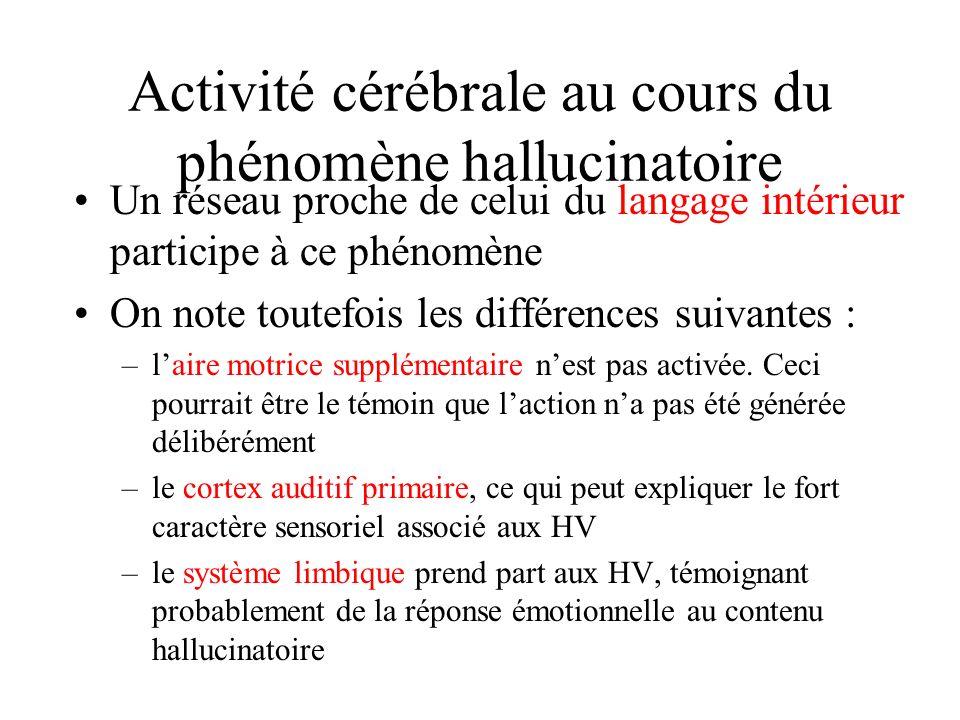 Activité cérébrale au cours du phénomène hallucinatoire