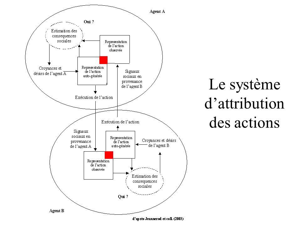 Le système d'attribution des actions
