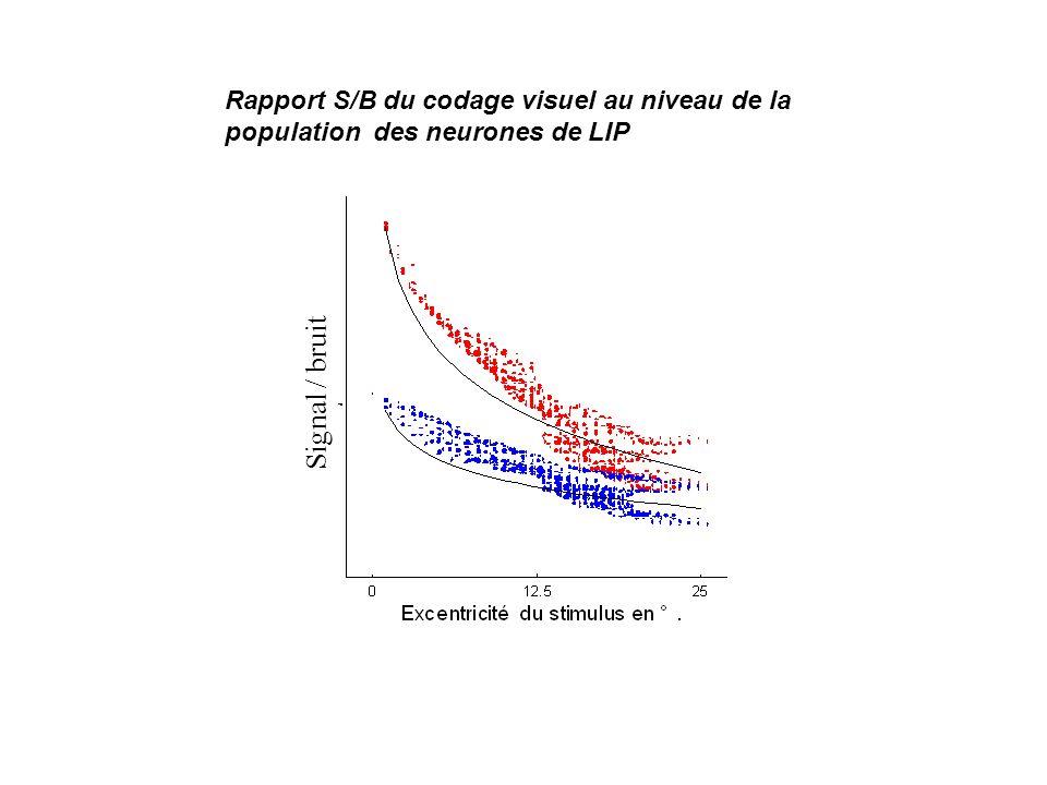 Rapport S/B du codage visuel au niveau de la population des neurones de LIP