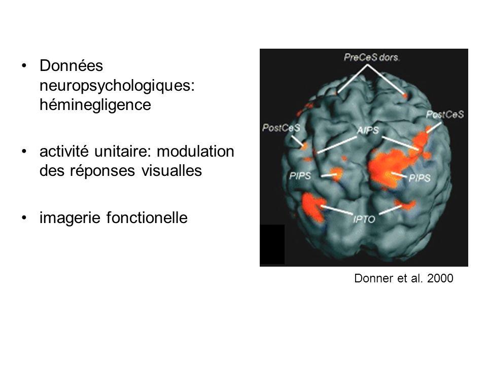Données neuropsychologiques: héminegligence