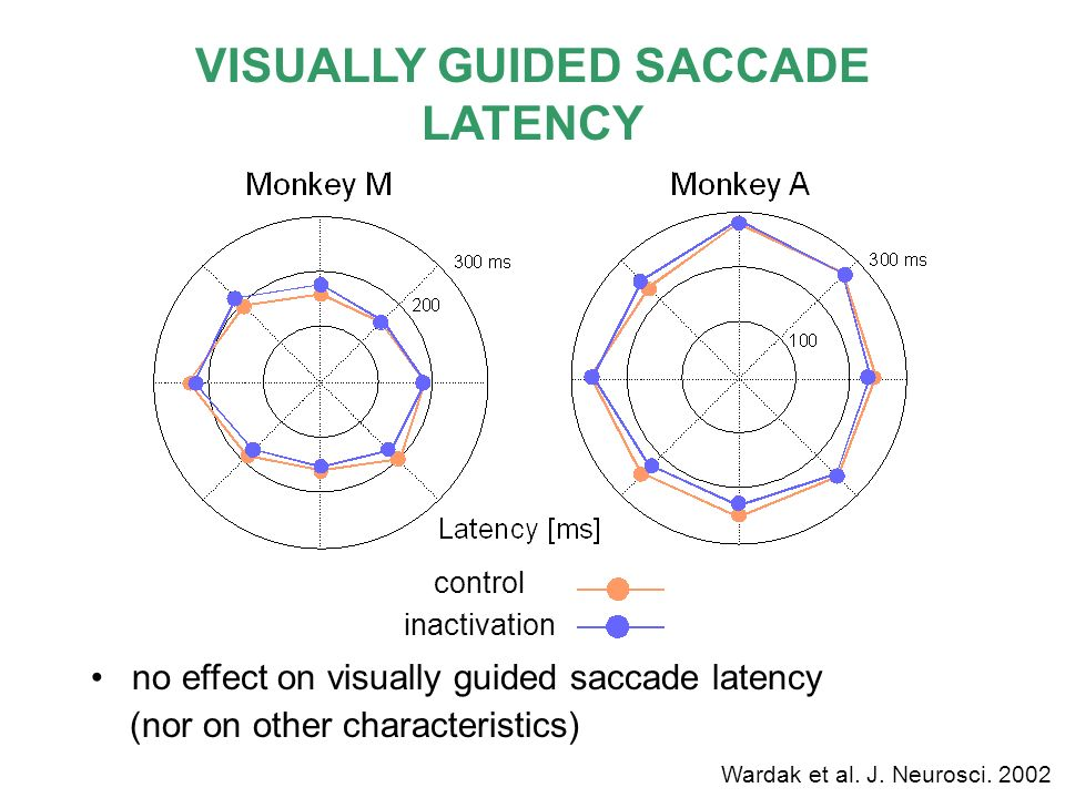 VISUALLY GUIDED SACCADE LATENCY