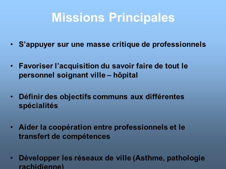 Missions Principales S'appuyer sur une masse critique de professionnels.
