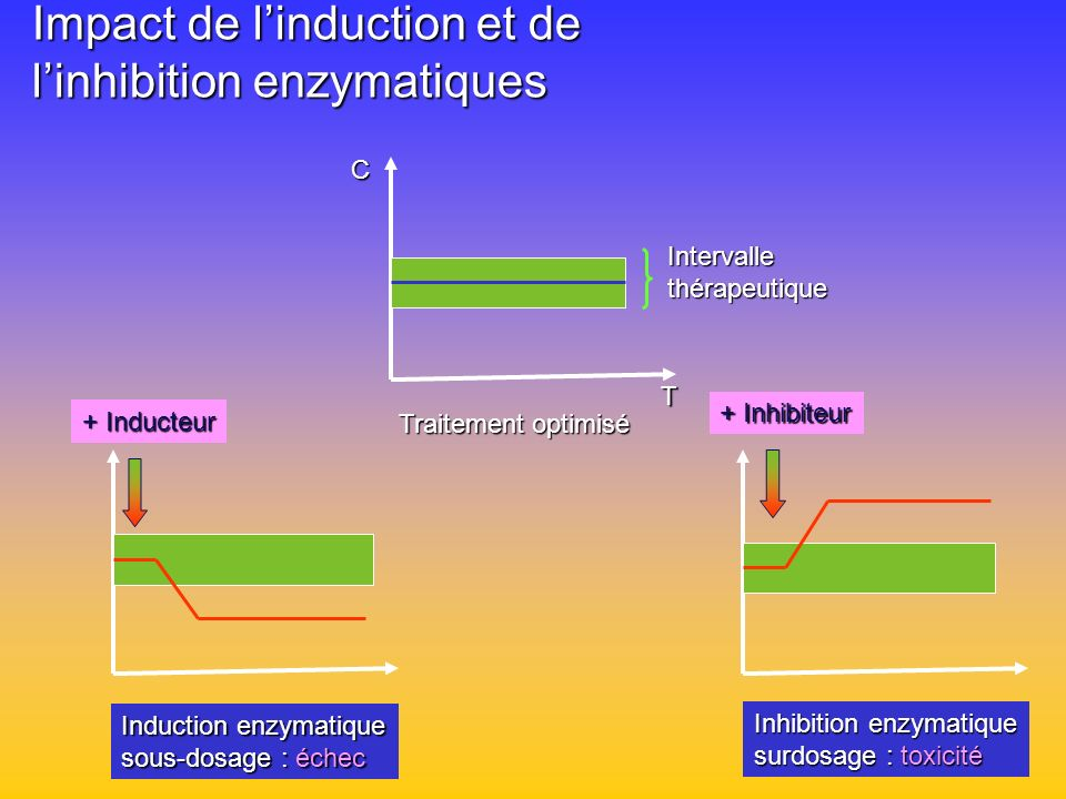 Impact de l'induction et de l'inhibition enzymatiques