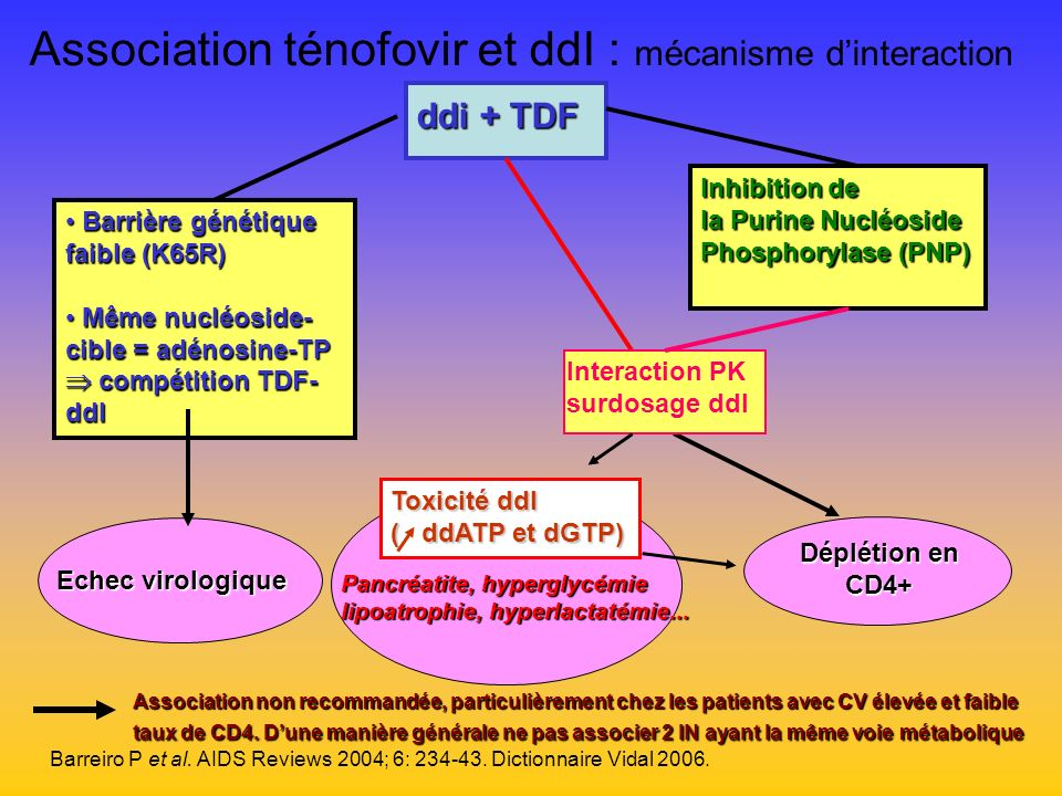 Association ténofovir et ddI : mécanisme d'interaction