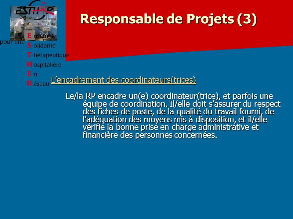 Responsable de Projets (3)