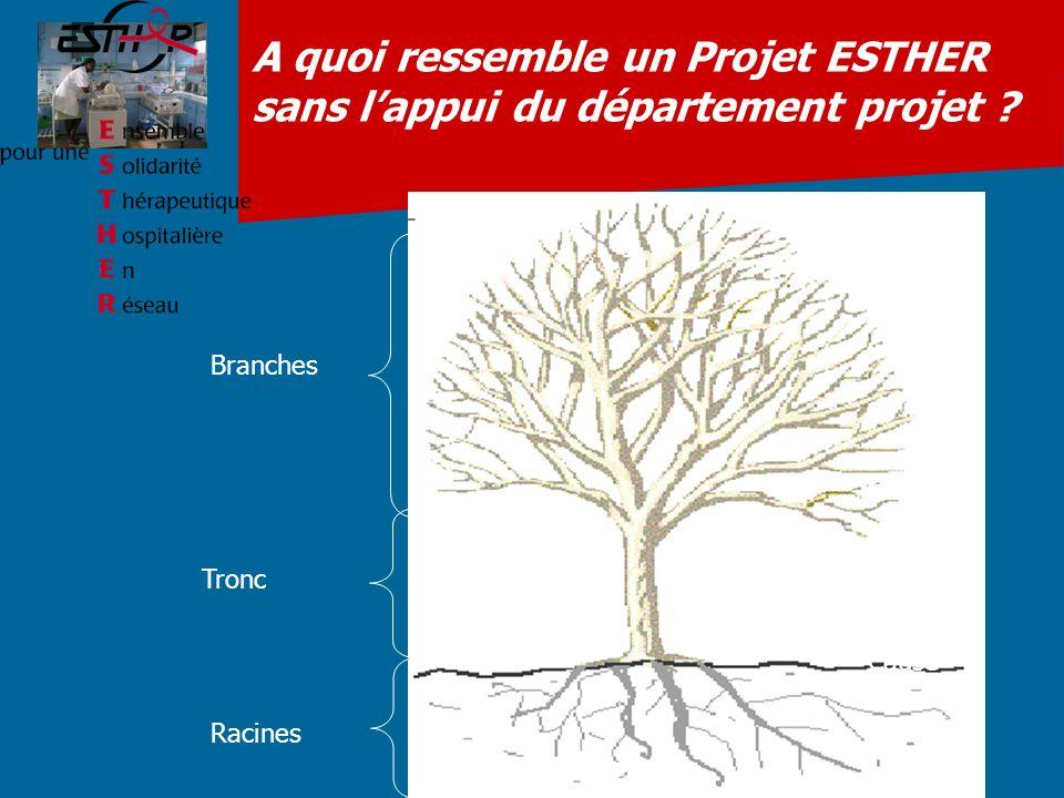 A quoi ressemble un Projet ESTHER sans l'appui du département projet