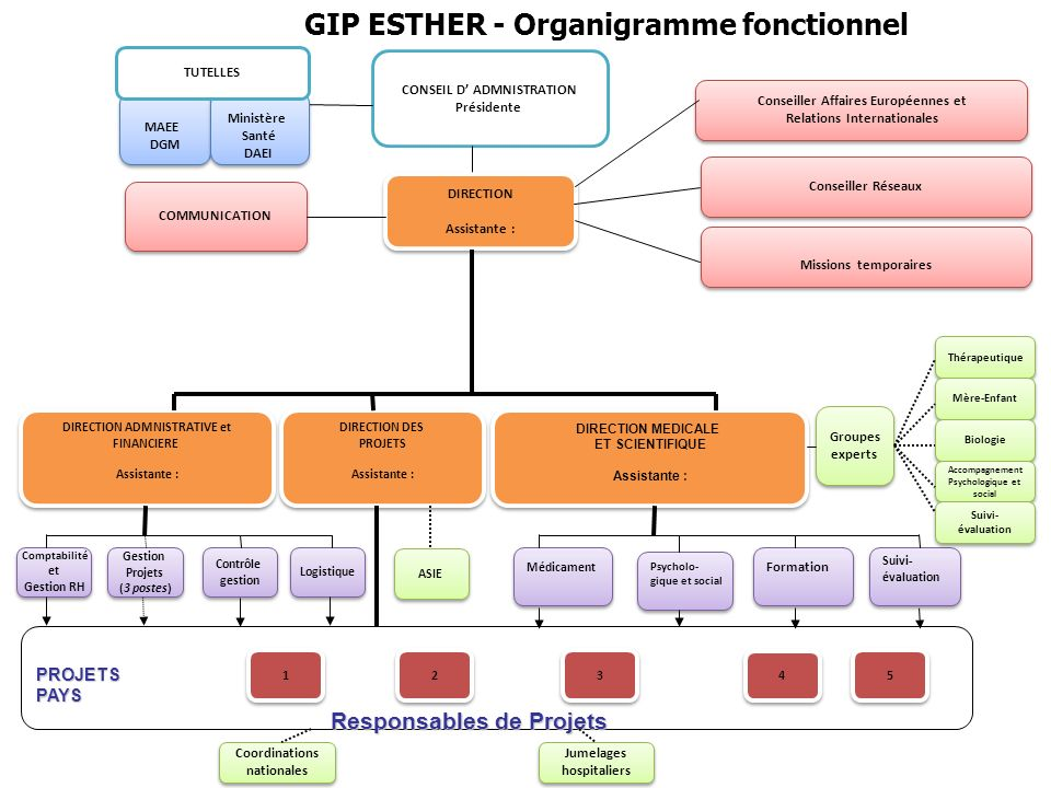 GIP ESTHER - Organigramme fonctionnel