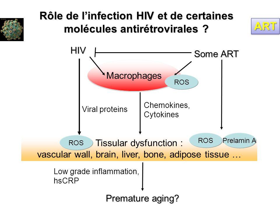 Rôle de l'infection HIV et de certaines molécules antirétrovirales