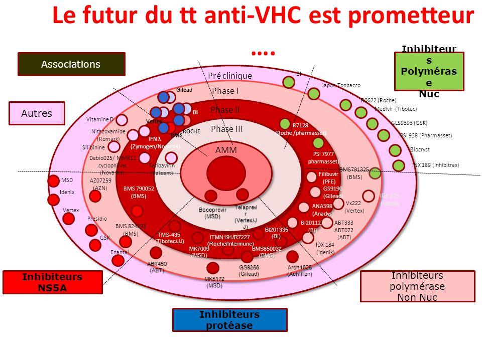 Le futur du tt anti-VHC est prometteur ….