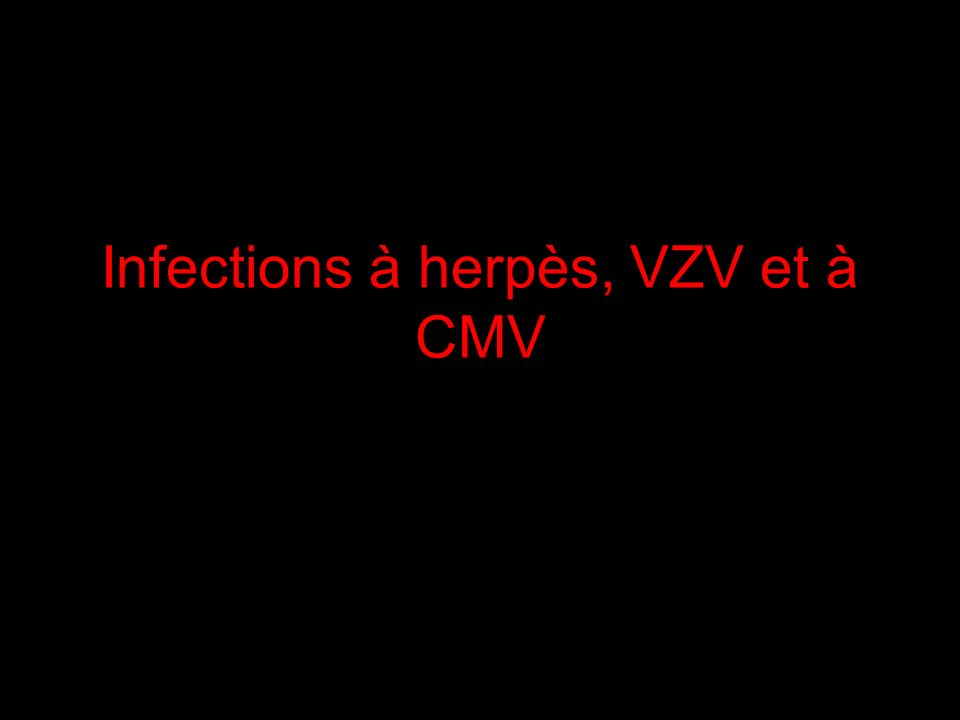 Infections à herpès, VZV et à CMV