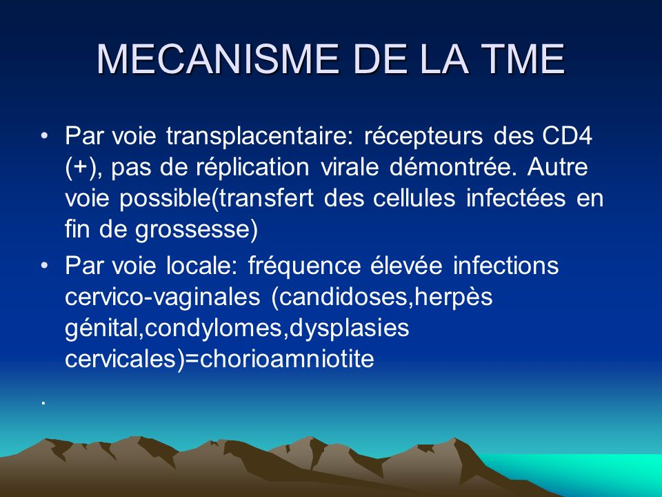 MECANISME DE LA TME