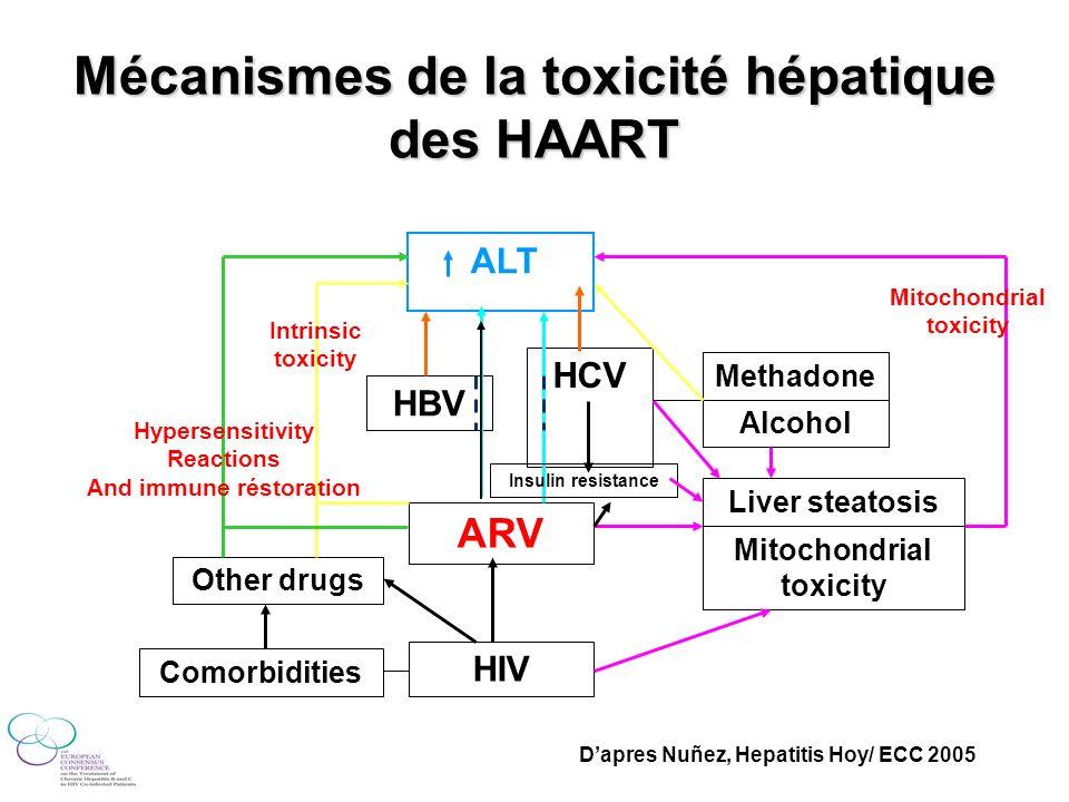 Mécanismes de la toxicité hépatique des HAART